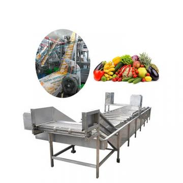 Drying Equipment for Dehydrated Fruits and Vegetables