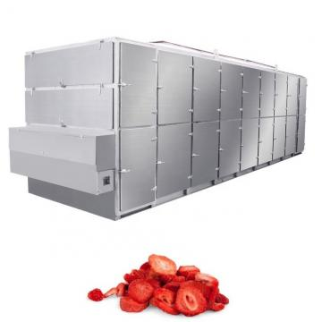 Fruit Drying Lyophilizer Equipment