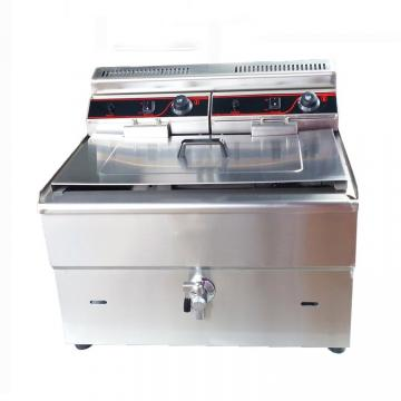 Customize Capacity Commercial Low Temperature Fryer for Dry Vegetable Fruit Chips