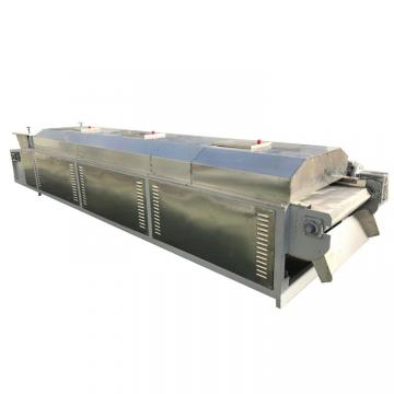 High Efficiency Fruit Dryer Continuous Air Mesh Belt Dryer Machine For Sale