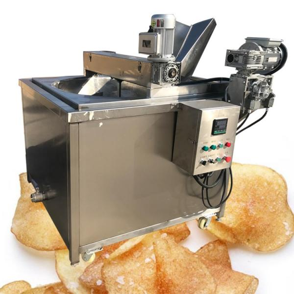 Desktop Mini Electric Deep Chips Fryer with Oil Tap - No Basket (1Tap)