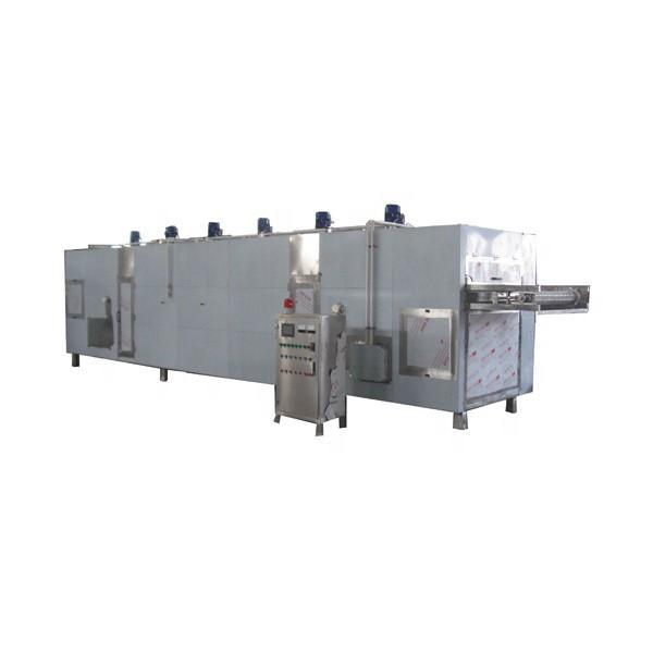 Fully automatic Belt Factory Applicable Industry hemp biomass dryer
